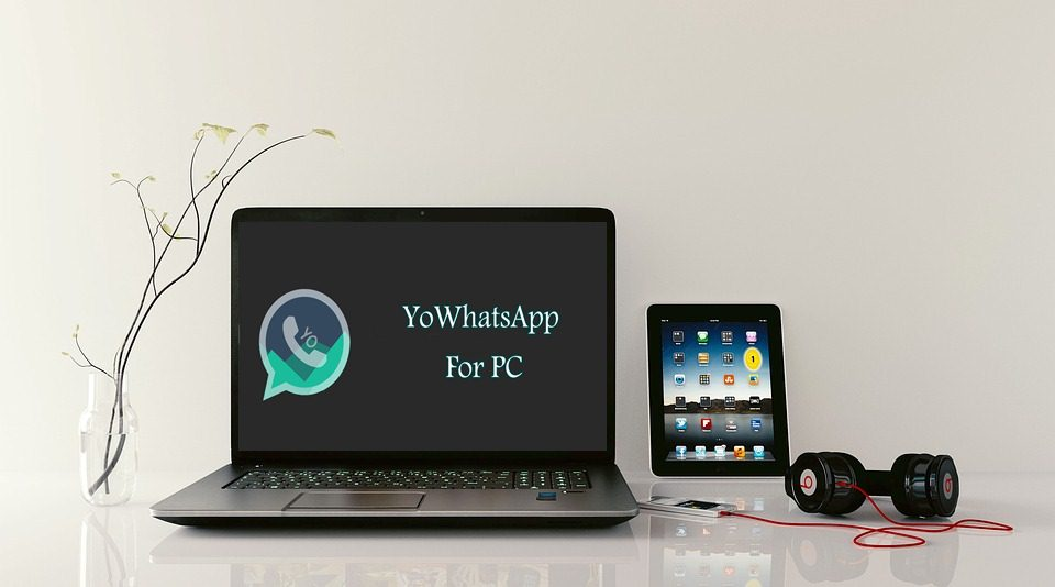 yowhatsapp for pc download